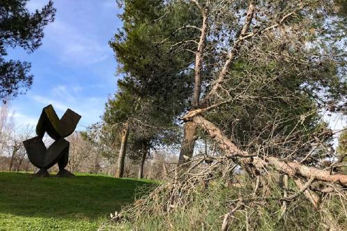 El temporal de vent provoca una trentena d'incidències a Santa Perpètua