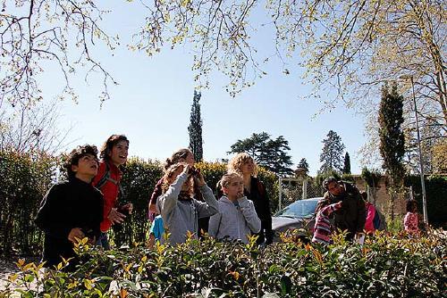 L'observació d'ocells i els secrets de les plantes centren els tallers d'abril de l'Aula del parc