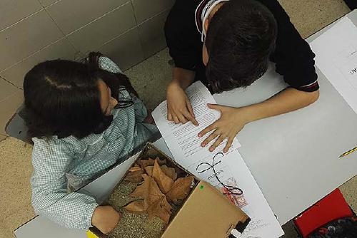 El Col·legi Sagrada Família implementa el Programa d'Innovació Pedagògica '#aquiproubulling'