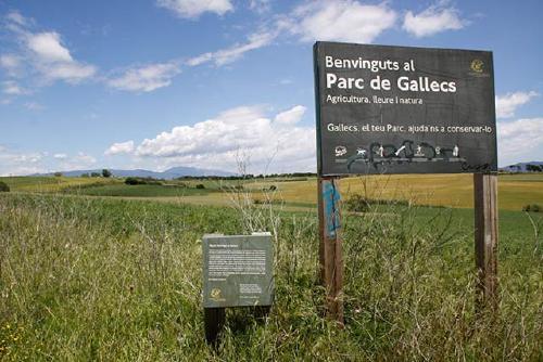 El Parlament insta al Govern a integrar Mogoda i Can Banús a l'Espai d'Interès Natural de Gallecs