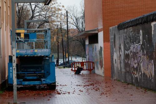 La tempesta Glòria causa danys materials per valor de 12.919 euros