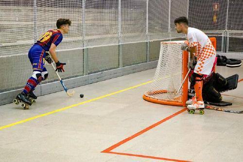 Suspeses les competicions d'hoquei patins i de bàsquet dels dos propers caps de setmana