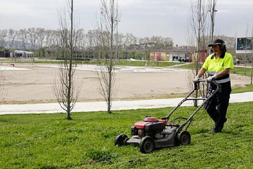 Setze veïns reben formació de jardineria i pavimentació