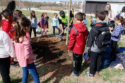 Prop de 3.500 escolars participen en les activitats de medi ambient de la Programació Estable