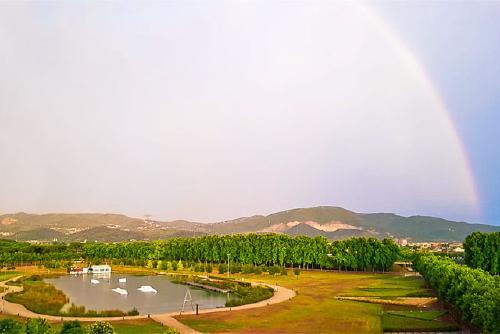 La forta tempesta provoca la caiguda d'arbres i acumulacions d'aigua en diversos punts del municipi