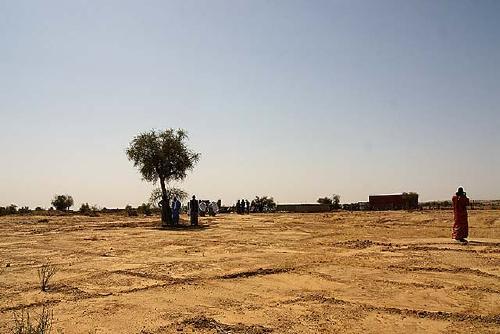El projecte de SPSolidària de l'hort comunitari de dones a Tachott (Mauritània) està en marxa