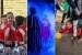 El Refugi, Tàndem i el Ball de Gitanes opten al Premi Cultura 2015 per la seva trajectòria