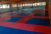 L'Escola de Karate Senshi Dojo torna als entrenaments
