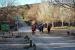 El Centre Excursionista de Santa Perpètua farà el diumenge 19 de juliol una sortida per Queralbs