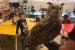 Clou el projecte de mascota de P5 del Col·legi Sagrada Família amb la visita d'aus rapinyaires
