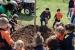 Quatre escoles participen en el Dia de l'Arbre que organitza la Regidoria de Medi Ambient
