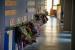 Ajuts a la matriculació i al menjador d'alumnat de les Escoles Bressol Municipals