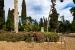 L'Aula del parc proposa aquest cap de setmana visitar el Bosc Soldevila