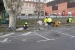 L'Ajuntament contracta deu veïns en un nou pla d'ocupació municipal per millorar la via pública