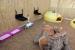 Millores a la colònia de gats ubicada al parc de la Ribera