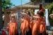 El Centro Cultural Andaluz celebra la Cruz de Mayo