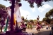 El Centro Cultural Andaluz celebra diumenge la Cruz de Mayo al parc Municipal