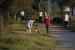 Els gossos poden tornar a fer servir el parc de la Ribera
